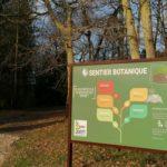 Sentier Botanique : Profitez et préservez